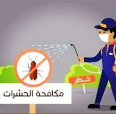 شركة مكافحة حشرات فى ملهم